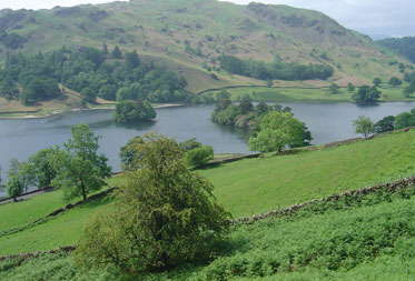 Dog Friendly Walks in the Lake District